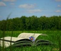 Июньская встреча Белгородского книжного клуба «Бамbook»