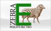 Зебра Е