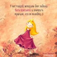-romashka-