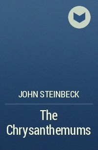 a struggle for sexual identity in the chrysanthemums by john steinbeck In the chrysanthemums, this struggle for equality is portrayed social, and sexual fulfillment by the prevailing steinbeck, john the chrysanthemums.