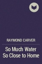 so much water so close to home In raymond carvers short story so much water so close to home it begins with claire the narrator, describing her husband the main character of the story stuart kane.